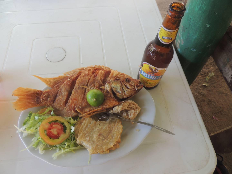 Gluten Free Fish and salad