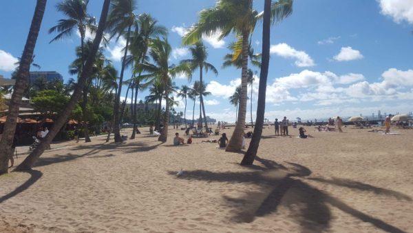 PF Changs Menu Honolulu