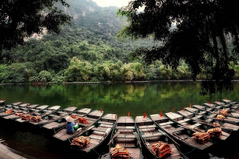 Lush Vietnam Nature