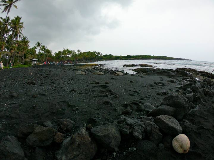 Maui black sand beach with three turtles