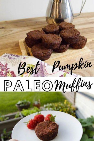 Best Pumplin Paleo Muffins